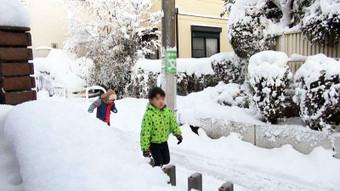 Snowintokyo01s